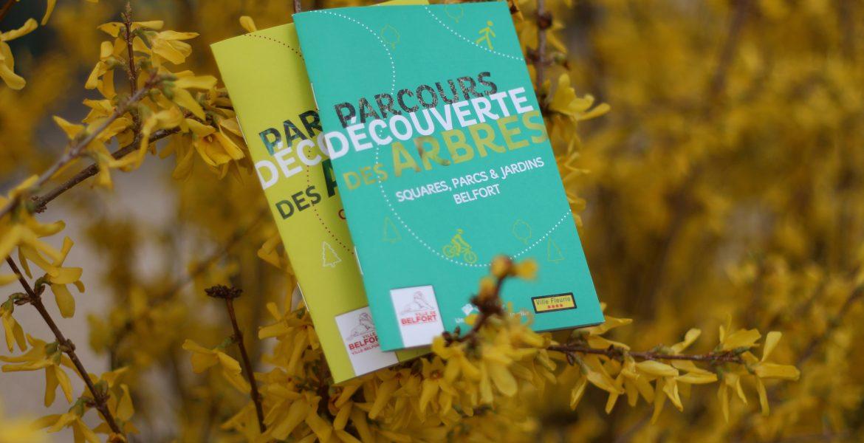 Partez à la découverte des arbres de la ville de Belfort !