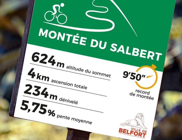 Une montée, façon Tour de France !